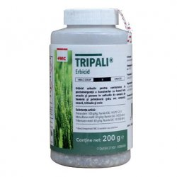tripali.jpg